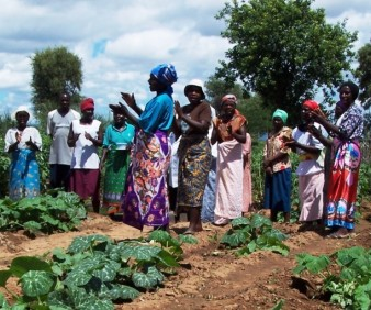 Agriculture study tours to Zimbabwe