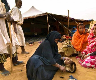 Nomads and Bedouins tours to Mauritania