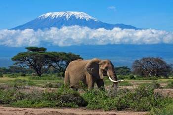 Tanzania expeditions and tours