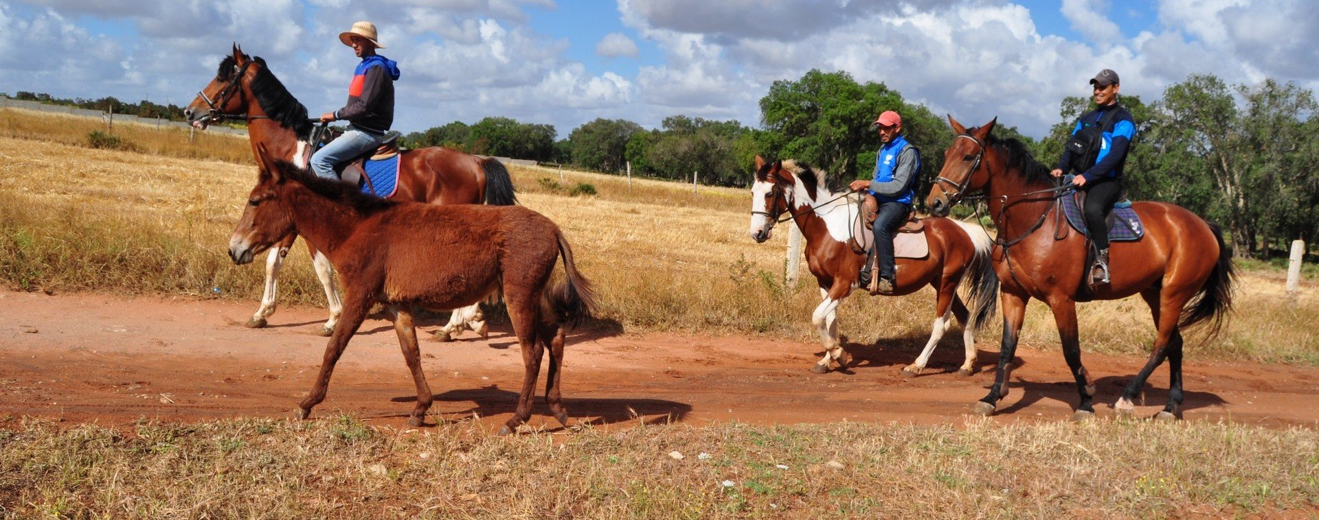 Morocco Horse Back Riding Tour